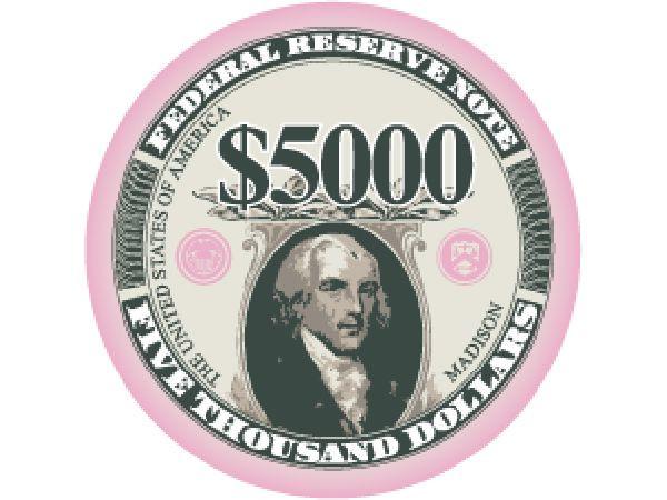 Liberty Ceramic Chip 5.000$ Pink 10gr.